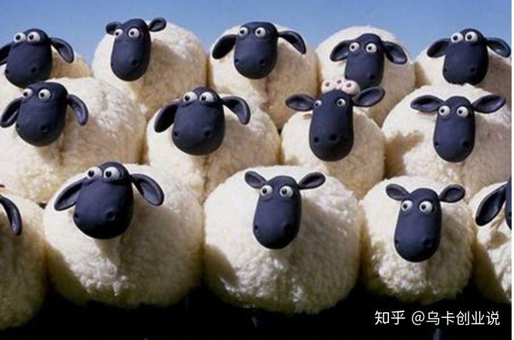 羊群效应:在每一个羊群效应背后大都有一个披着羊皮的狼